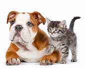 DOK 01 RK0793 01