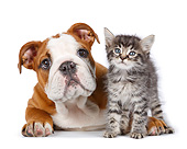 DOK 01 RK0794 01