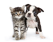DOK 01 RK0802 01