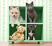 DOK 01 XA0002 01