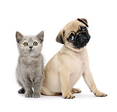 DOK 01 XA0011 01