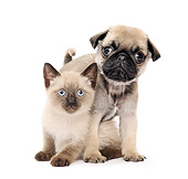 DOK 01 XA0015 01