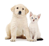 DOK 01 XA0017 01