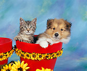 DOK 01 RK0020 03