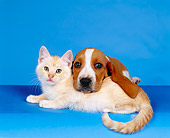 DOK 01 RK0031 06