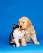 DOK 01 RK0034 11