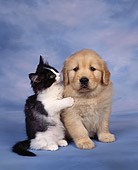 DOK 01 RK0038 18