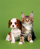 DOK 01 RK0044 01