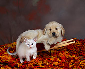 DOK 01 RK0058 12
