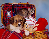 DOK 01 RK0079 01