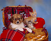 DOK 01 RK0079 09