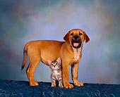 DOK 01 RK0088 05