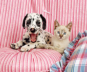 DOK 01 RK0107 05