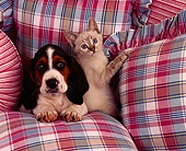 DOK 01 RK0108 07