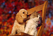 DOK 01 RK0113 01