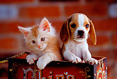 DOK 01 RK0158 21