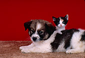 DOK 01 RK0172 04