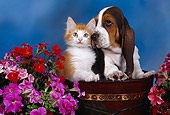 DOK 01 RK0217 04