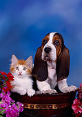 DOK 01 RK0217 09