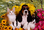 DOK 01 RK0220 10