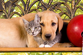 DOK 01 RK0327 01
