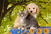DOK 01 RK0352 01