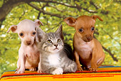 DOK 01 RK0360 01