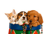 DOK 01 RK0382 01