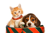 DOK 01 RK0383 01