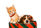 DOK 01 RK0385 01