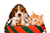DOK 01 RK0386 01