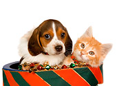 DOK 01 RK0388 01