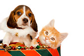 DOK 01 RK0389 01