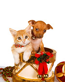 DOK 01 RK0398 01