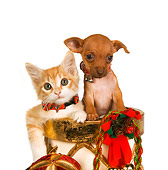 DOK 01 RK0399 01