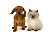 DOK 01 RK0402 01