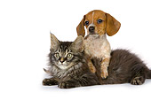 DOK 01 RK0407 01