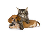 DOK 01 RK0408 01