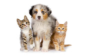DOK 01 RK0414 01