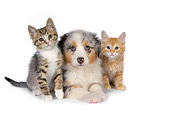 DOK 01 RK0415 01