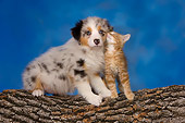 DOK 01 RK0416 01