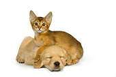 DOK 01 RK0436 01