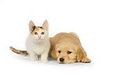 DOK 01 RK0444 01