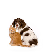 DOK 01 RK0452 01