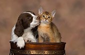 DOK 01 RK0471 01