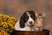 DOK 01 RK0472 01