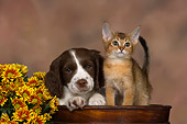 DOK 01 RK0473 01