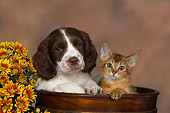 DOK 01 RK0474 01