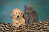 DOK 01 RK0477 01