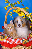 DOK 01 RK0490 01